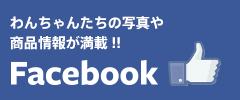 i&pet|公式facebook
